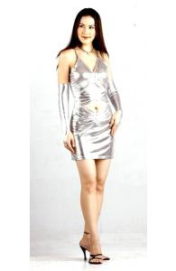 Short Silver Metallic Dress