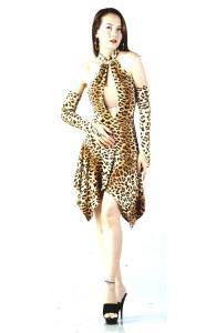 Animal Print Salsa Dress