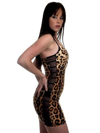 Sexy Tiger Net Dress