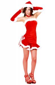 Fashionista Flair Santa Dress
