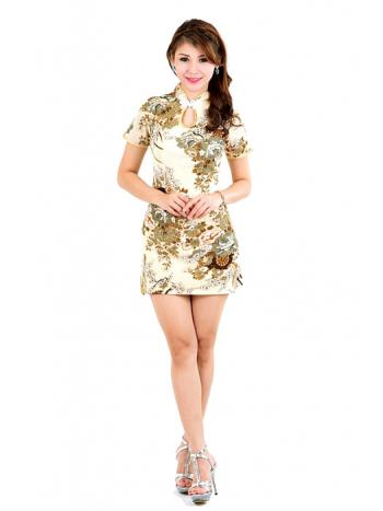 Luxurious Mandarin Mini Dress
